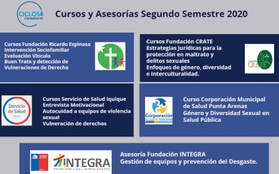 Cursos y asesorías desarrollados por CICLOS durante el Segundo Semestre de 2020